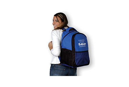 Amsport Backpack Screened