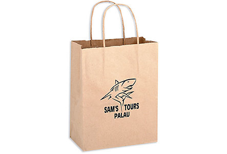 8X4.5X10.5 Brown Kraft Shopper Bag