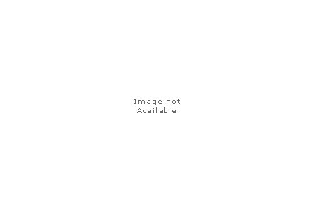 Digital Stainless Bottle 25 Oz
