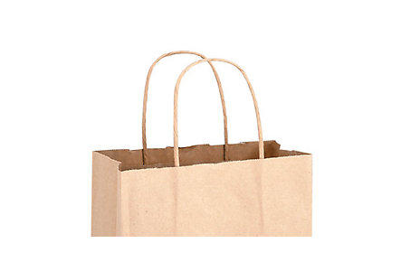 Matte Finish Paper Bag 16