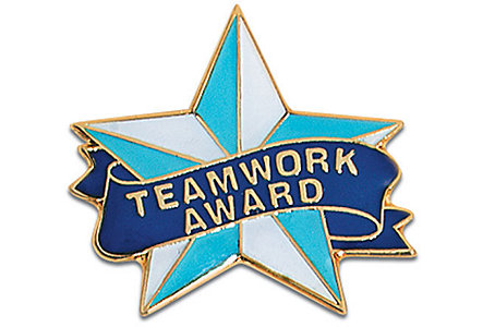 Teamwork Award - Blue/White Star