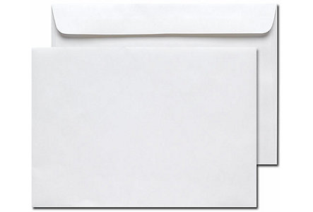 Monitor Mailing Envelope