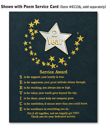 Star Service Award Pin - 2 Yr